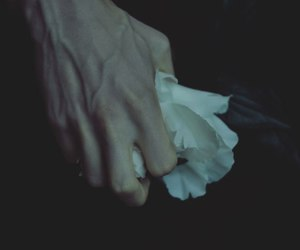 flower, hand, and pale image