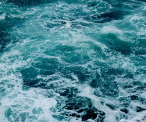 sea and blue image