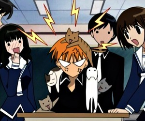 anime, cats, and class image