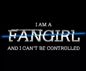 fangirl, book, and fandom image