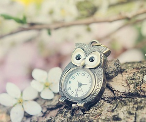 owl, clock, and flowers image