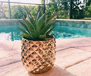 pineapple, plants, and summer image