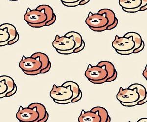 cat, kitten, and fondos image