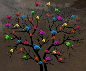 birds, tree, and colors image