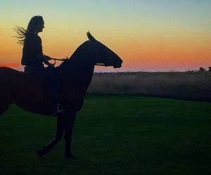 countryside, freedom, and horses image