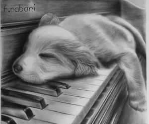 dog, piano, and puppy image