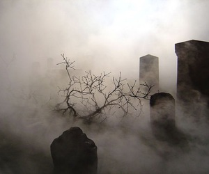 fog and cemetery image