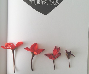 arte, flowers, and journal image