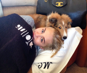 miley cyrus, dog, and emu image