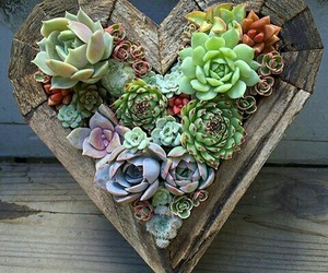 flowers, heart, and plants image