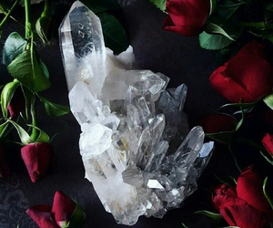 crystal, rose, and flowers image