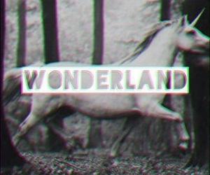 wonderland, unicorn, and black and white image