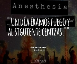 book, frases, and wattpad image