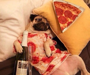 dog, pizza, and pug image