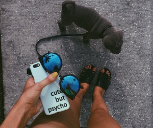dog, sunglasses, and puppy image