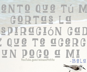 frase, mexico, and quotes image