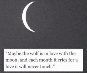 wolf, moon, and love image