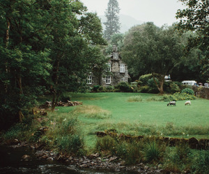 home, green, and nature image