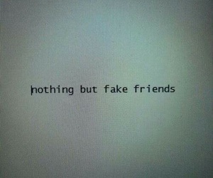 friends, fake, and quote image