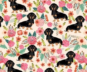 dachshund, dog, and pattern image