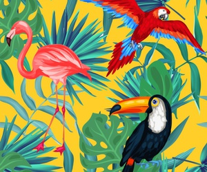 background, pattern, and tropical image