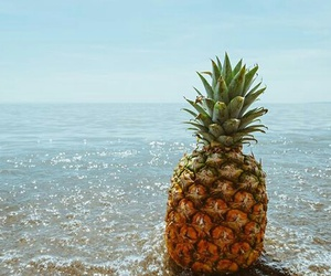 photography and pineapple image