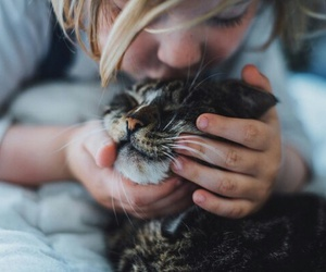 baby, cat, and kiss image