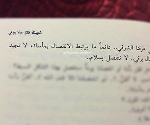 أحببتك اكثر مما ينبغي, رواية, and إقتباس image