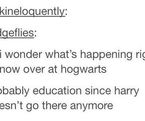 harry potter, tumblr, and hogwarts image