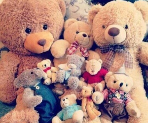 teddy bear and bear image