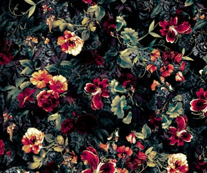 background, floral, and garden image