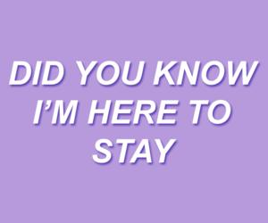 blink 182, Lyrics, and purple image