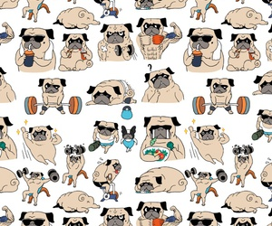 background, doggie, and fitness image