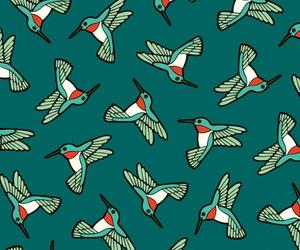 background, bird, and hummingbird image
