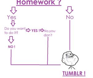 homework, no, and true image