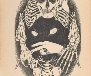 skeleton, skull, and cat image