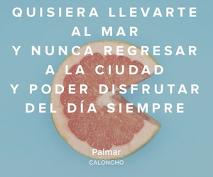 always, frases, and frutas image