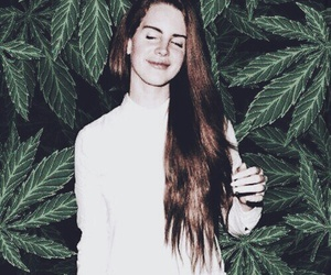 lana del rey, weed, and drugs image