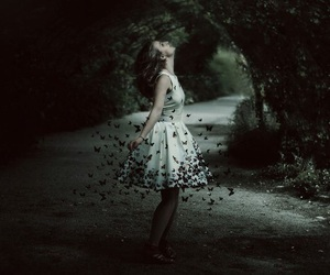 butterfly, dark, and Dream image