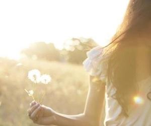 girl, sun, and dandelion image