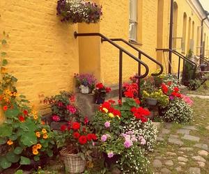 colorful, lappeenranta, and @faneturne image