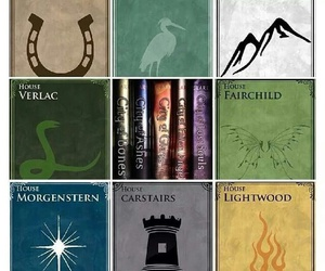 mortal instruments and infernal devices image