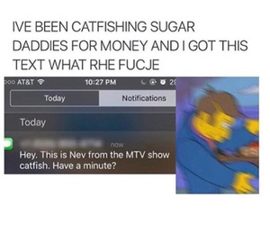 catfish, funny, and mtv image
