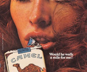 camel, cigarette, and quote image