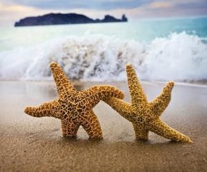 beach, sea, and stars image
