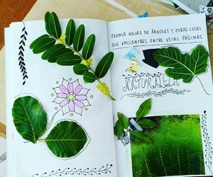 arboles, green, and hojas image
