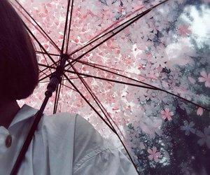umbrella, flowers, and rain image
