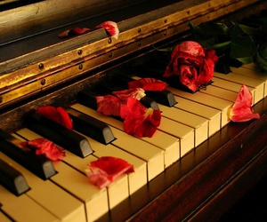 piano, music, and rose image