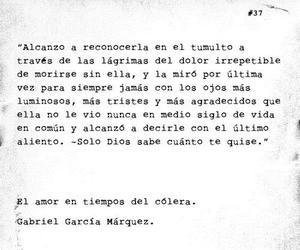 109 images about gabriel garcía márquez on we heart it see more