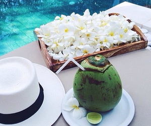 summer, flowers, and coconut image